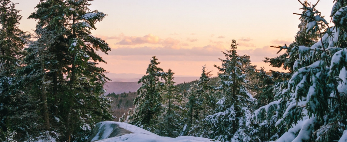 a view of mountains in the distance with snowcapped trees in the foreground